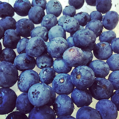 Eat Blueberries they are great food for healthy hair
