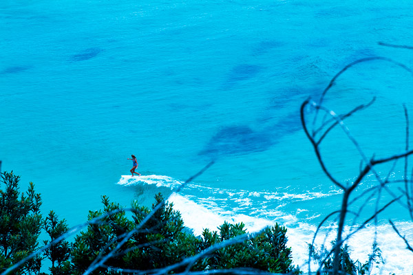 Lone surfer girl on a longboard in turquoise waters. Photo by Fran Miller