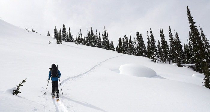 Backcountry ski touring in Canada